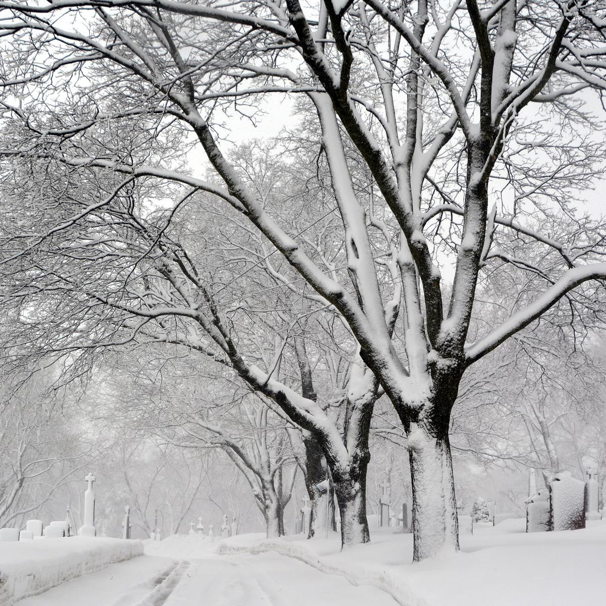 Begrafenis sneeuw Laren Rebel Uitvaart Huizen blog