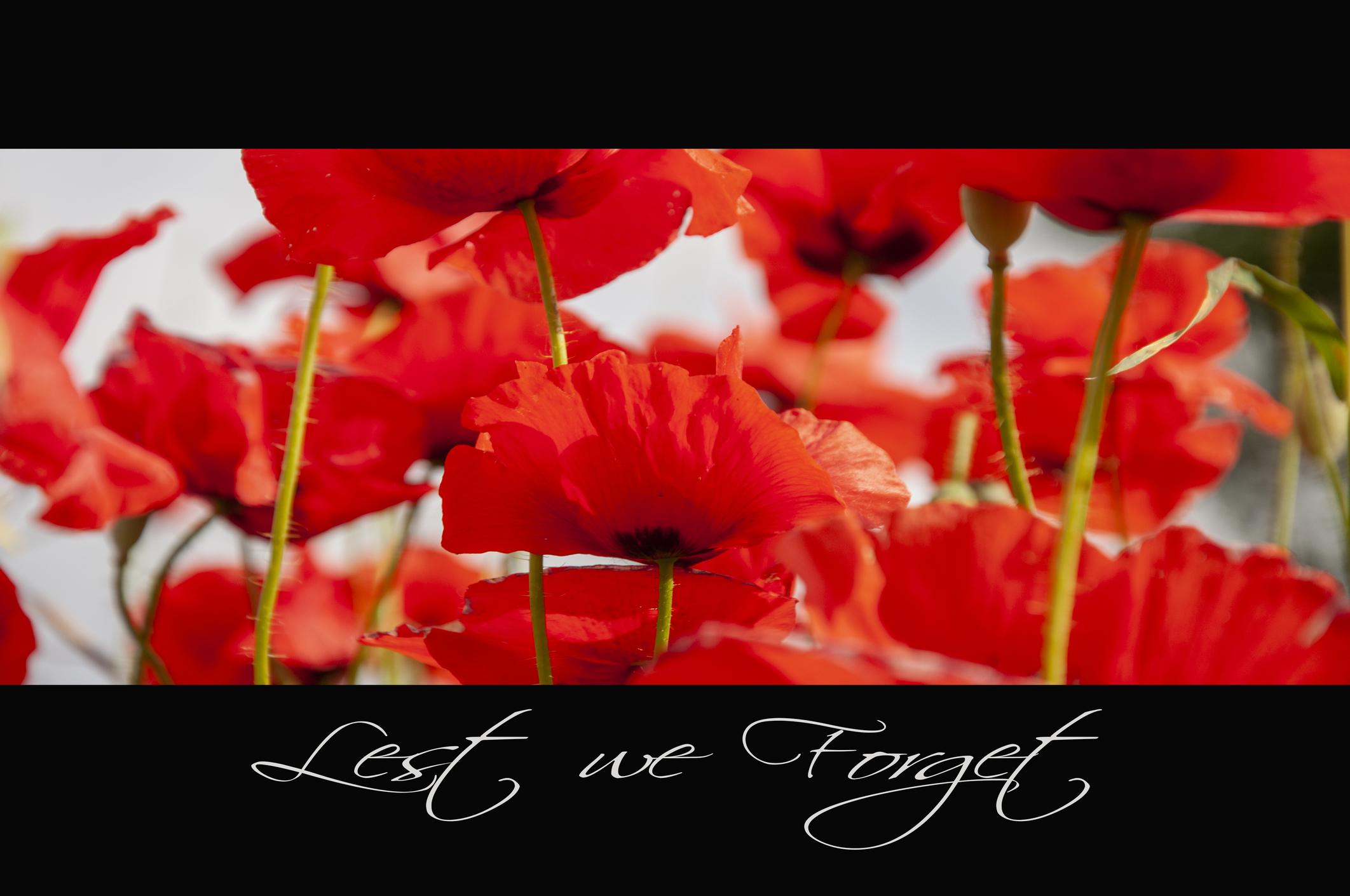 Remembrance tastbaar herinneren Rebel Uitvaart Huizen Almere